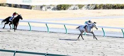 藤田菜七子が5馬身差の圧勝劇!自身3回目の2週連続Vで今年2勝目!