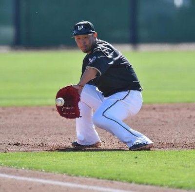 日本ハム中田開幕ピンチ左内転筋肉離れ三塁保留