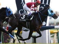 【有馬記念】オジュウチョウサン&武豊騎手、レイデオロ&C.ルメール騎手など16頭