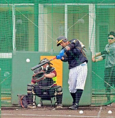 阪神マルテ7連発で右へ5発!広角20発に浜中C「日本の野球に対応できる」
