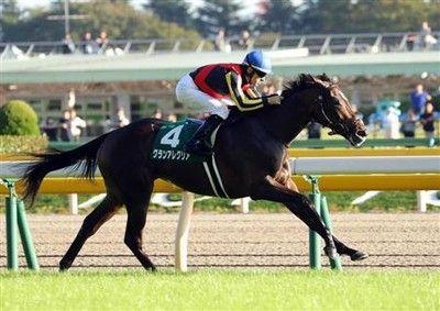 【朝日杯FS】38年ぶり牝馬Vへ!グランアレグリア2枠2番!武豊ファンタジストは8枠14番枠順確定