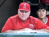 エンゼルス・ソーシア監督、今季限りで退任か新監督はオースマス氏ら内部昇格プランMLB公式サイト報じる