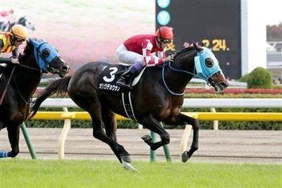 【有馬記念】オジュウチョウサンが武豊騎手とのコンビで平成ラストを飾る