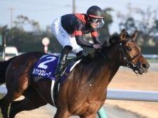 【チャンピオンズC 勝負の分かれ目】「ダートのアーモンドアイ」が初めての先行策で圧勝。「形」のない、この馬だけの強さを発揮
