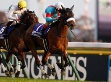 【ジャパンC】2分20秒6! 衝撃のレコードで3冠牝馬アーモンドアイが完勝!/JRAレース結果