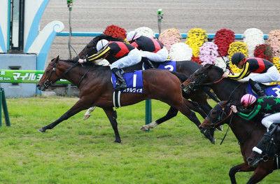 【マイルCS】ステルヴィオが悲願のG1初制覇!史上5頭目の3歳馬V