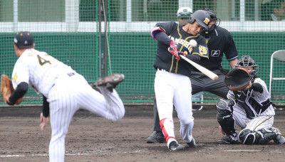 阪神ドラ3木浪、ド派手デビュー!初実戦で決勝3ラン他球団スコアラーも絶賛