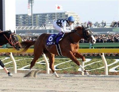 【フェブラリーS】武豊、約1年2カ月ぶりGI勝利!インティが破竹の7連勝で戴冠菜七子キッキングは5着