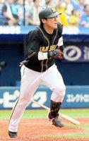 【阪神】陽川一時勝ち越し打も…虎サヨナラ負けで最下位逆戻り