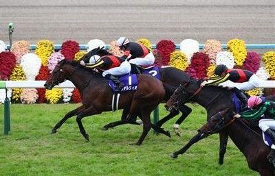 【マイルCS】秋のマイル王は3歳馬ステルヴィオ!ビュイック騎手はJRA・GI初制覇
