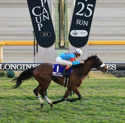【ジャパンC】牝馬3冠アーモンドアイが衝撃レコードV!史上7頭目のG1年間4勝目