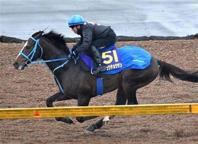 【有馬記念】オジュウチョウサン4馬身先着石神「100%に近い仕上がり」