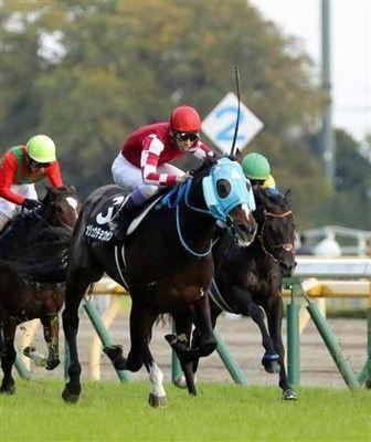 【有馬記念】さあ有馬V2!キタサンに続く武豊オジュウチョウサン「夢があって面白い」