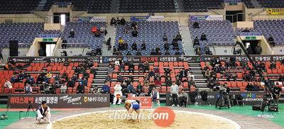 (朝鮮日報日本語版) 出場者より観客数が少ない!?危機的状況の韓国相撲