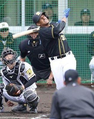 阪神首脳陣が「4番・マルテ」に慎重なワケ…球団OB「恥をかきたくない意識が強い」