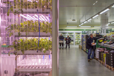 infarms-first-in-store-farm-in-metro-berlin_merav-maroody
