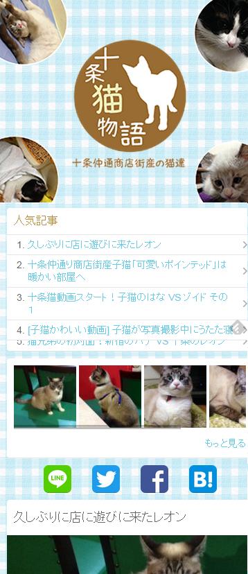 十条猫物語り~猫写真集~