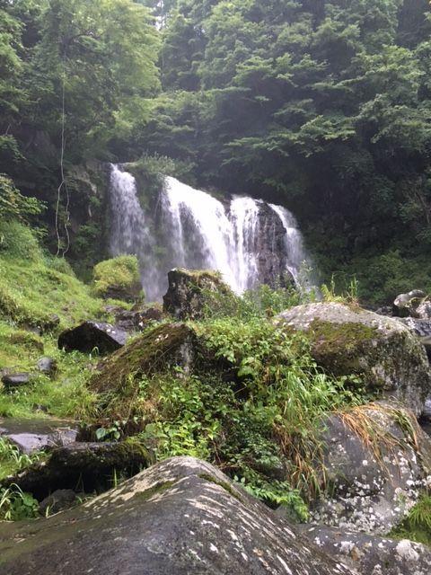 yamame,iwananohoukosagasi37253