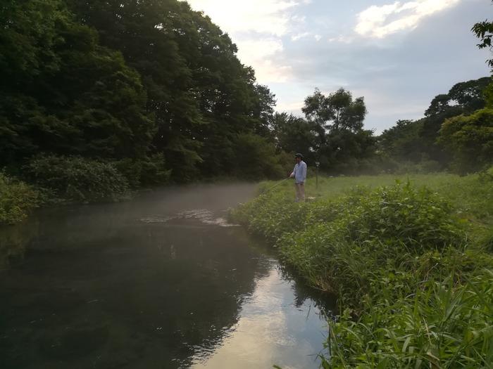 yamame,iwananohoukosagasi37331