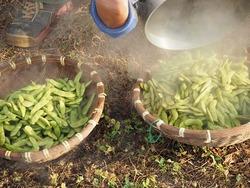 土鍋で枝豆