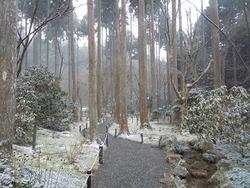 小雪 (2)