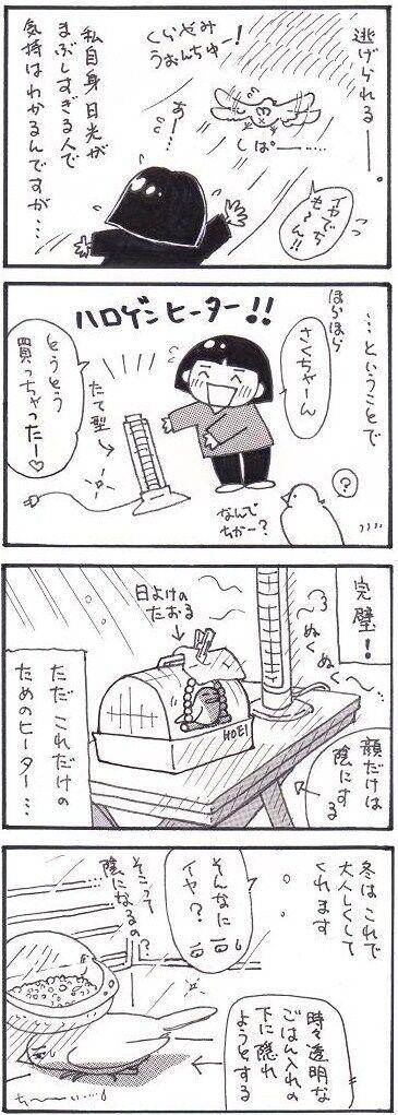 46冬の日光浴2②