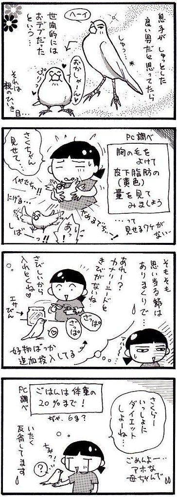 21ダイエット②