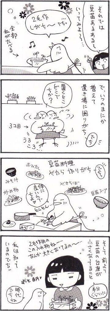 55 青菜っ葉について②
