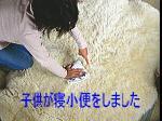 03b12963.jpg