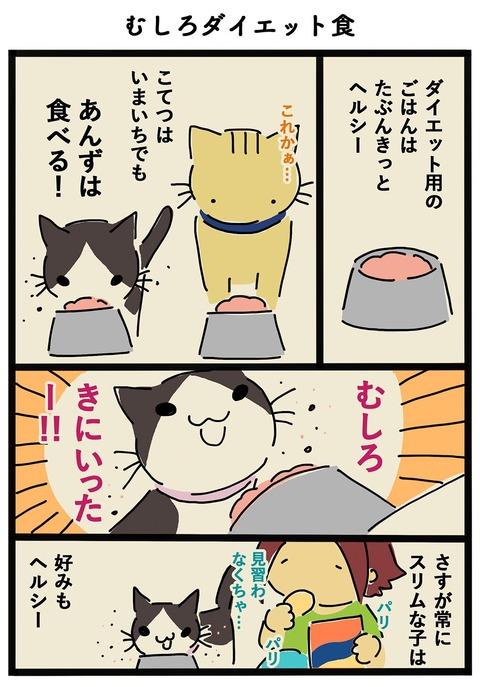iwako_cat_411