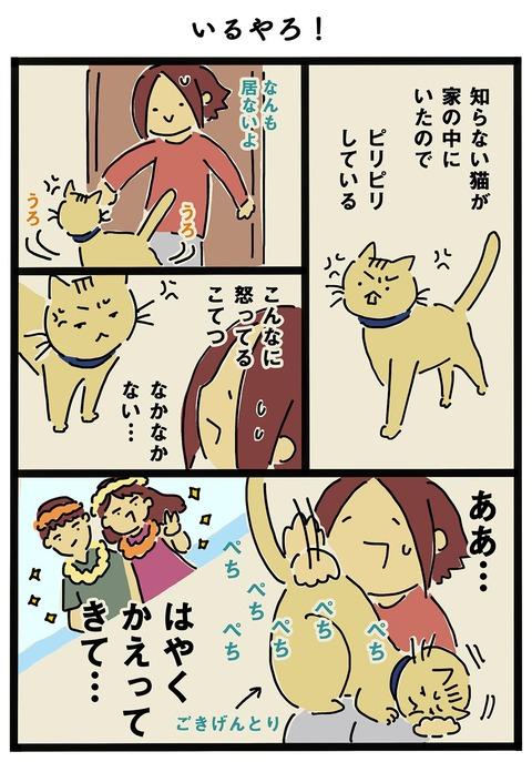 iwako_cat_262
