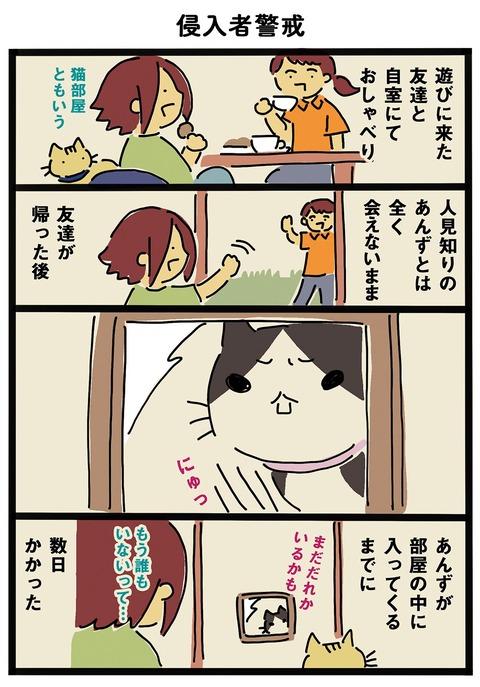 iwako_cat_365