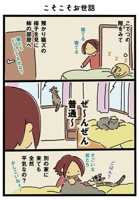 iwako_cat_255