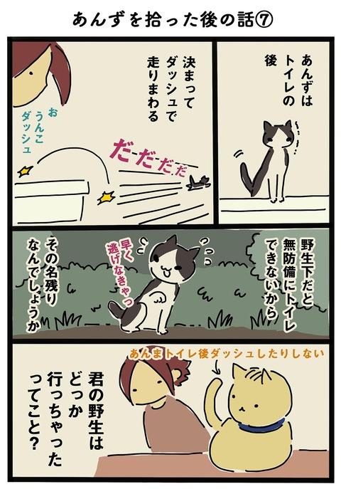 iwako_cat_199