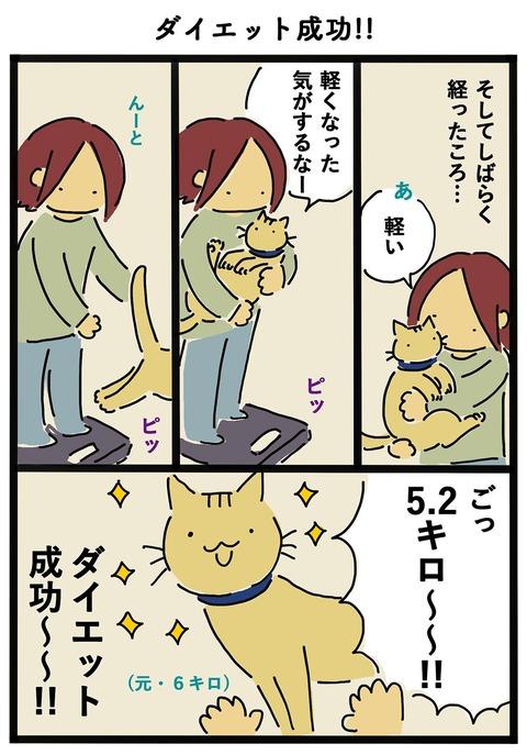 iwako_cat_415