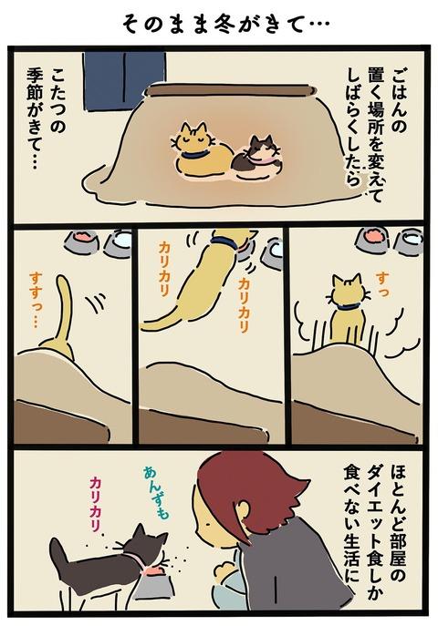 iwako_cat_414