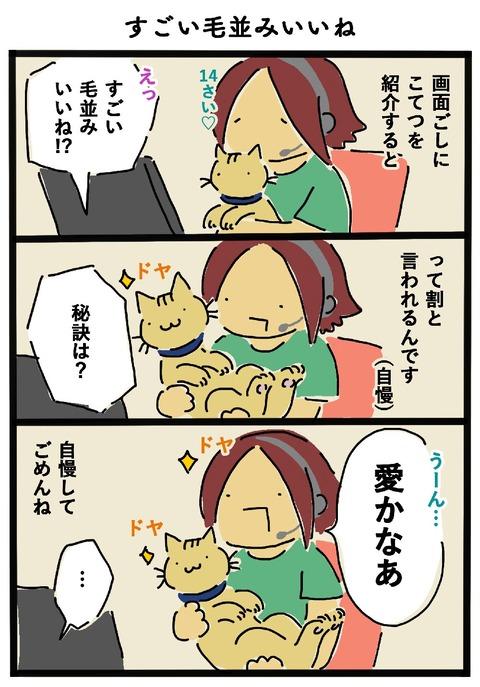 iwako_cat_457