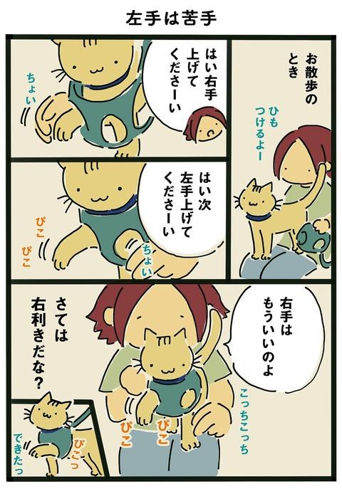 iwako_cat_361