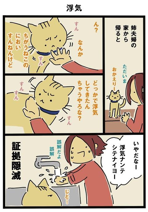 iwako_cat_252