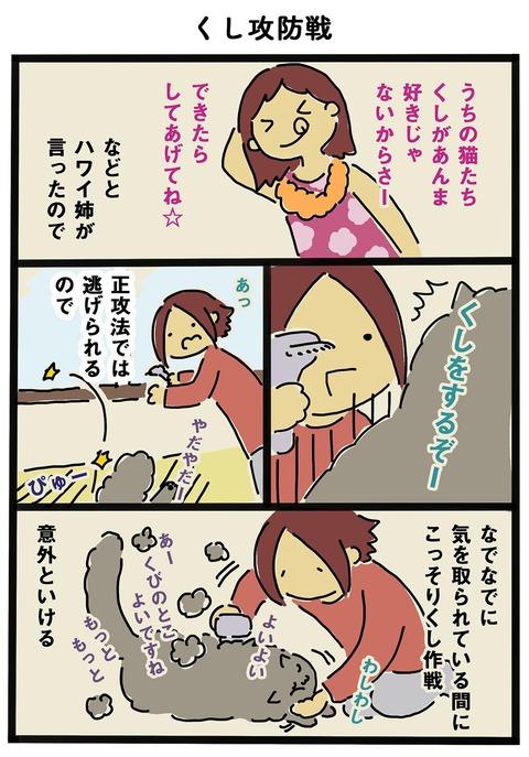 iwako_cat_257