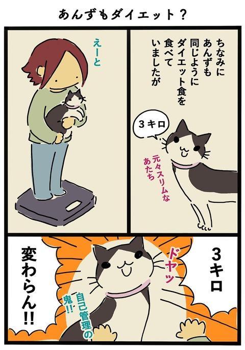 iwako_cat_416