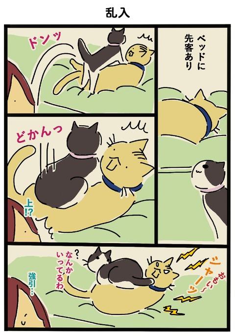 iwako_cat_458