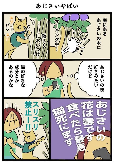 iwako_cat_450