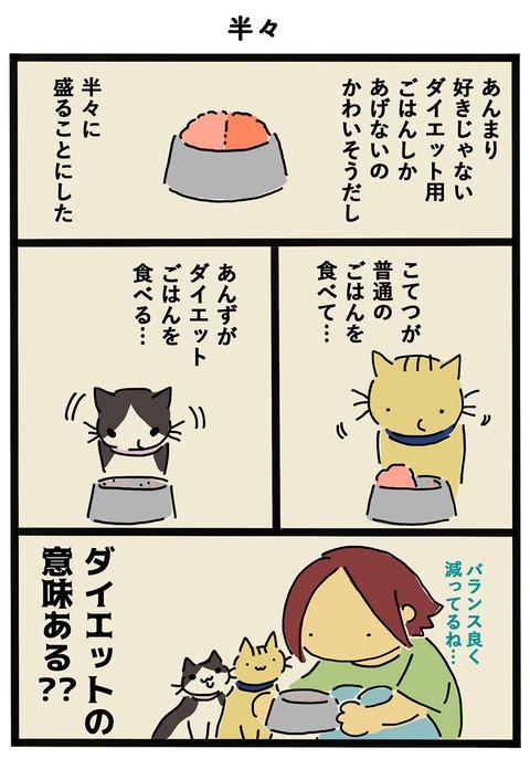 iwako_cat_412