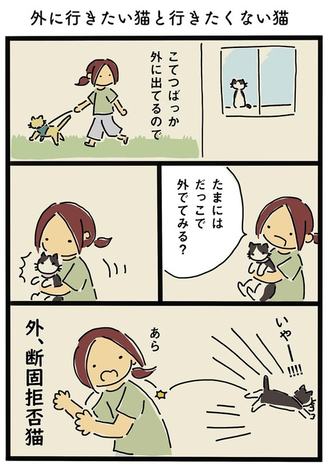 iwako_cat_25