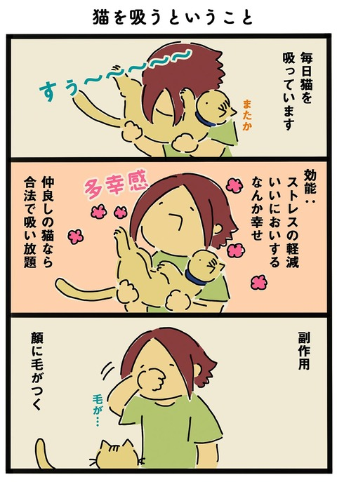 iwako_cat_366