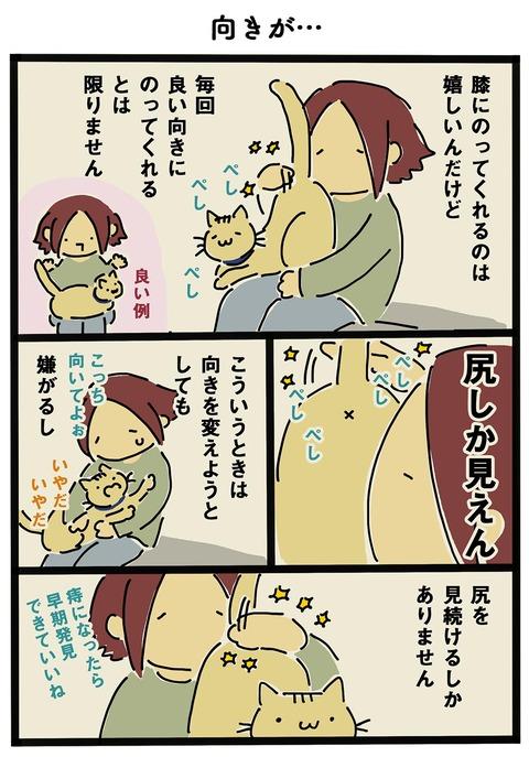 iwako_cat_216