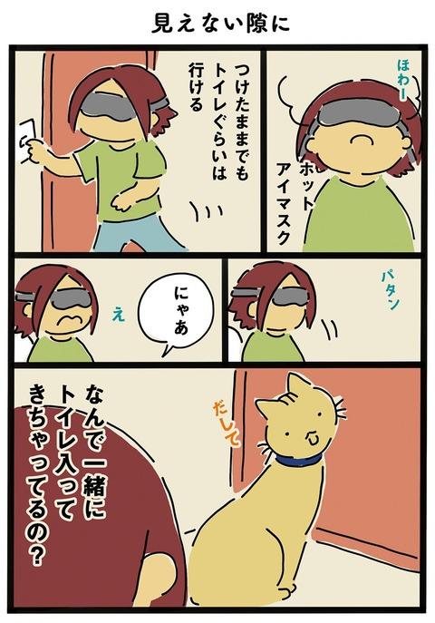 iwako_cat_367