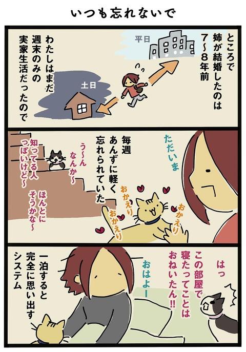iwako_cat_248