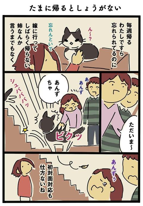 iwako_cat_249